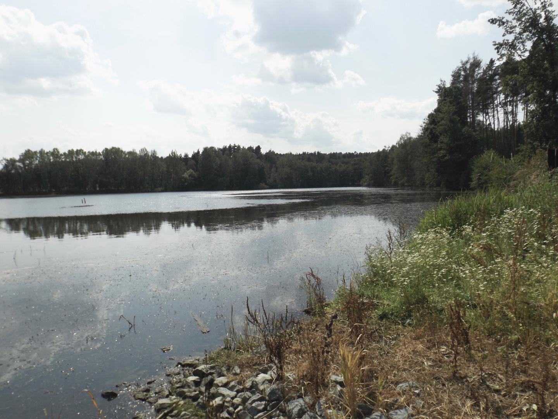 Hornímiřkovský rybník