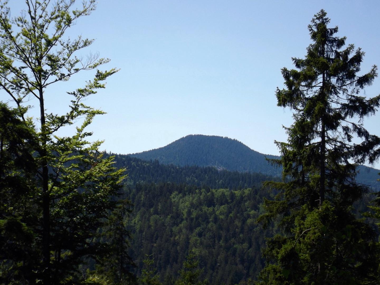 Schwarzeck