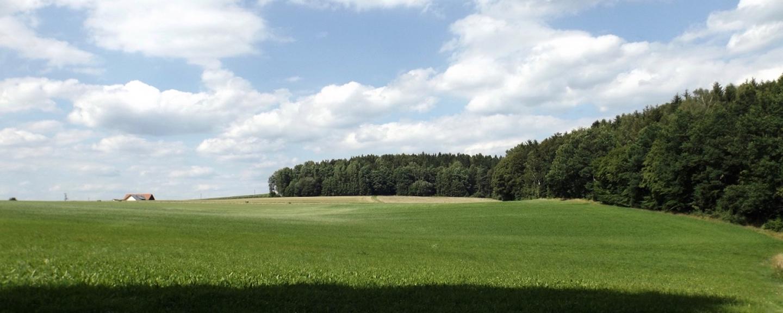 Kreuther Wiesenland