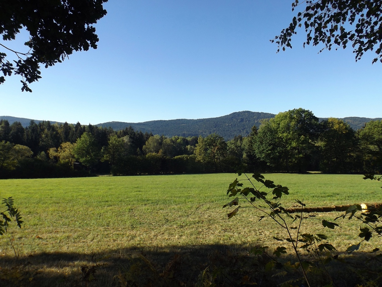 Durchblick auf die Hügel südlich des Zellertals
