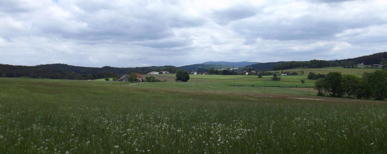 Steinlohe