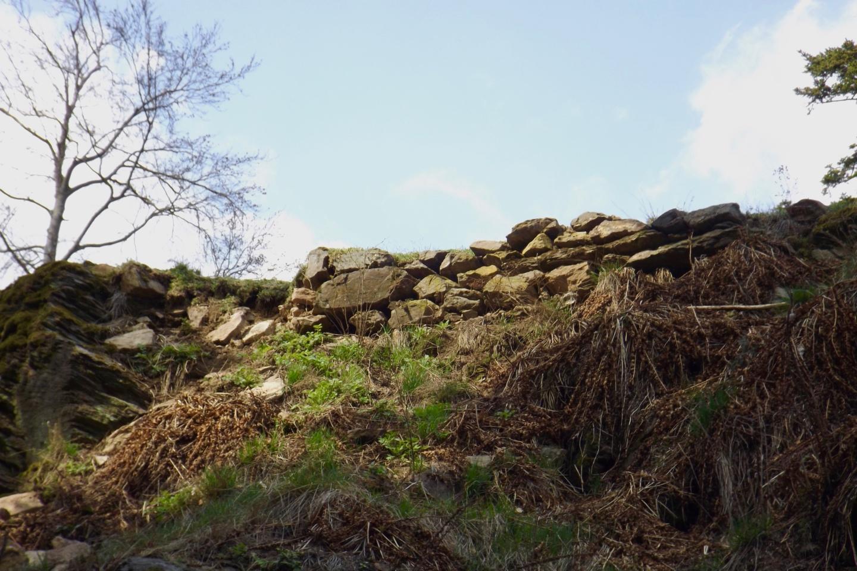 Noch mehr Burgmauerreste