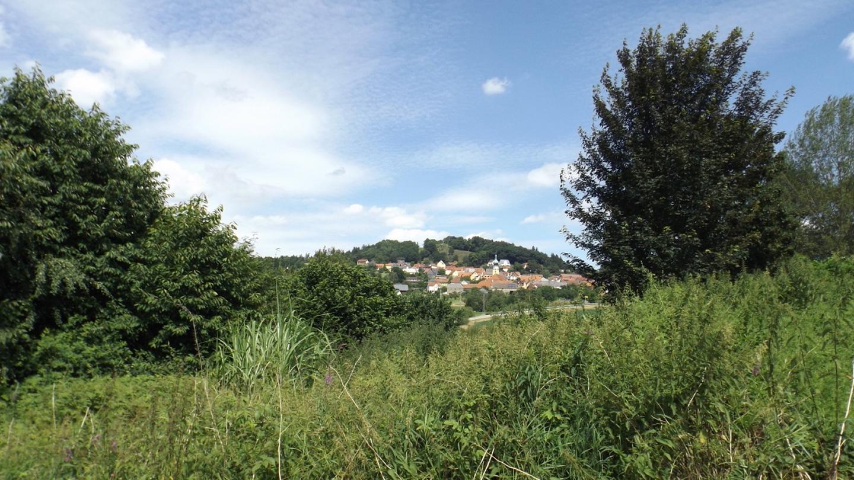 Durchblick nach Tännesberg mit Schlossberg