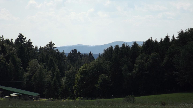 Nabburger Bergland