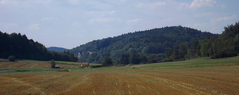 Alter Tannstein mit Dautersdorf