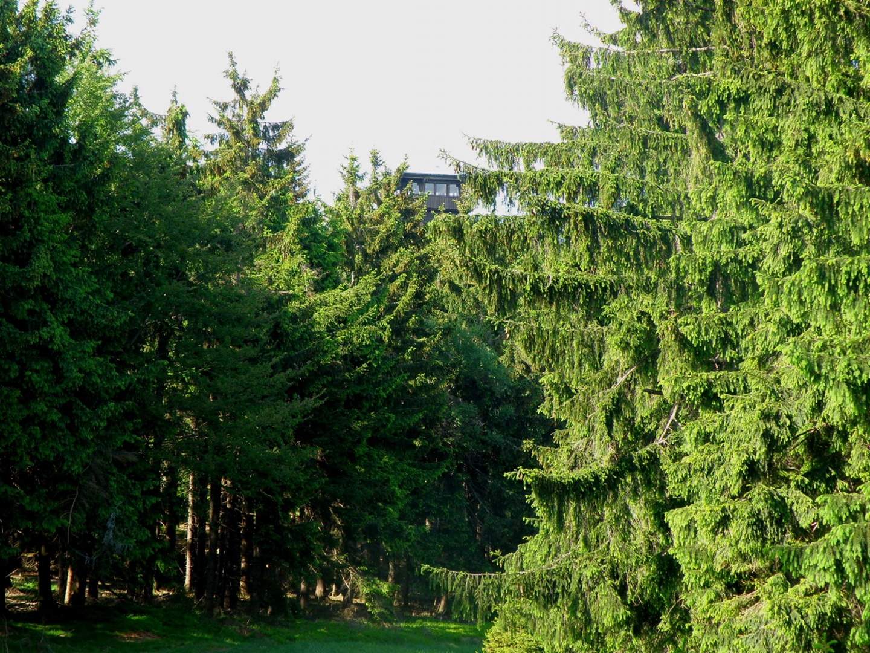 Böhmerwaldturm