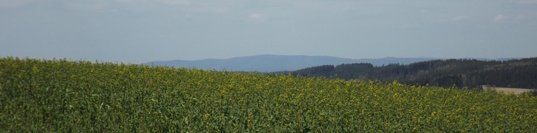 Der Steinwald im Nordwesten liegt etwas im Dunst