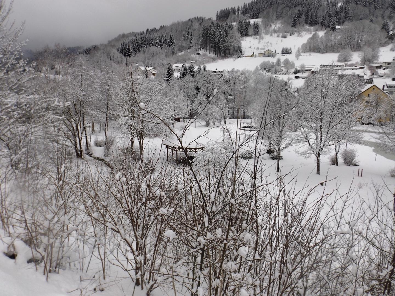 Kurpark Warmensteinach