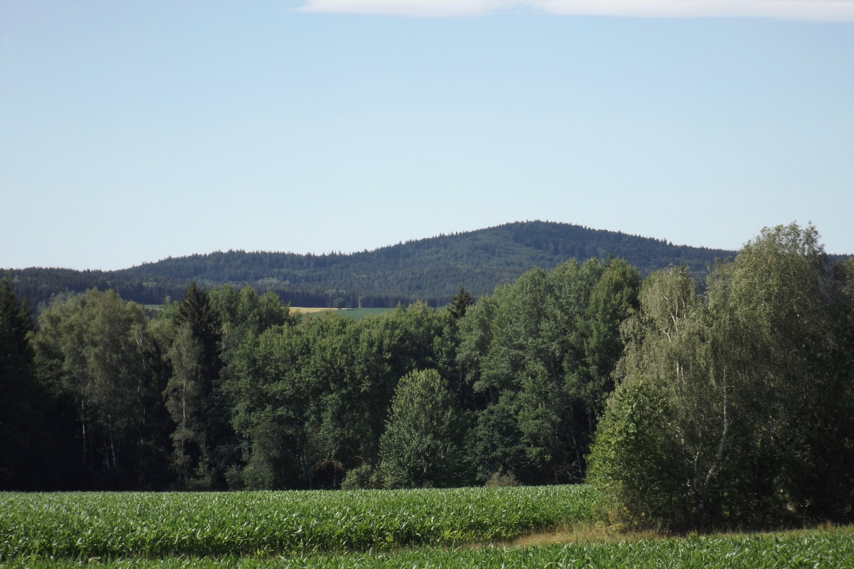 Stangenberg