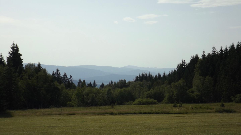 Durchblick zum Künischen Gebirge